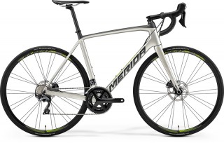 MERIDA SCULTURA DISC 5000 Silk Titan 2019